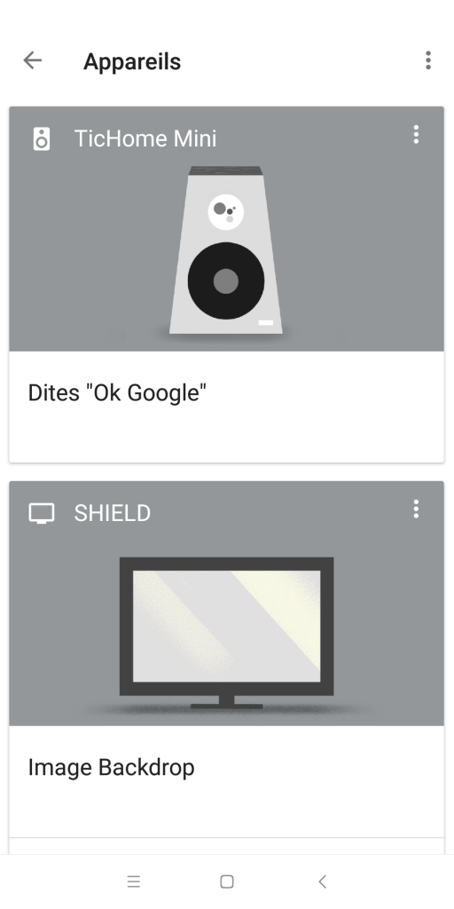 Application Google Home